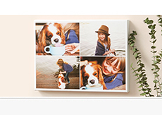 Up to 65% OFF Collage Canvas