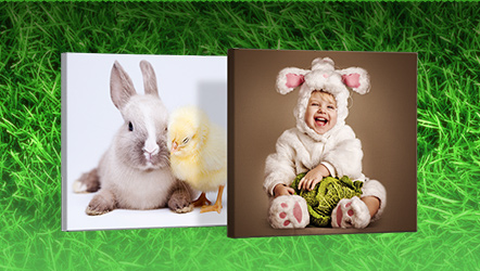 Canvas Prints - from £7