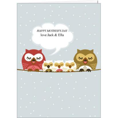 Sleeping owl family