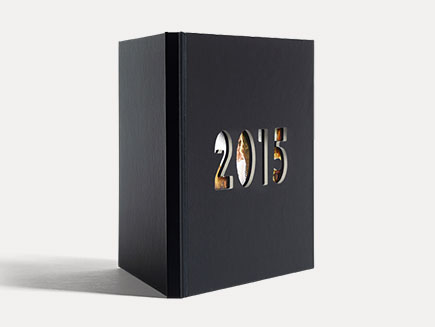 2015 Photo Year Book