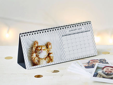 image of cat on desk calendar